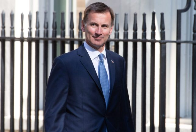 Hunting for Abortions to be Sooner: Jeremy Hunt's 12-week Abortion Plan